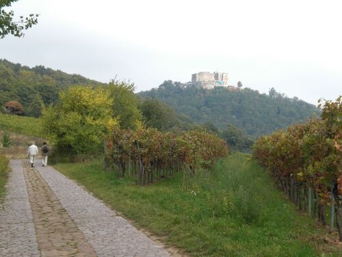 04.View_at_Hambach_Castle