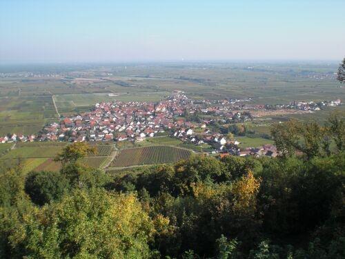 13.Diedesfeld